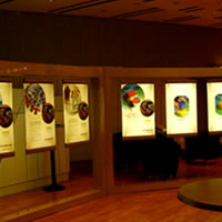 Light Boxes - Exhibitions